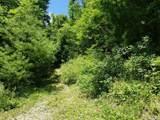 tbd Shoal Creek Road - Photo 1