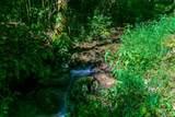 2278 Buck Creek - Photo 6
