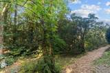 375 Panther Mountain Road - Photo 63