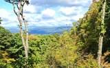 TDB Shady Wood Trail - Photo 3
