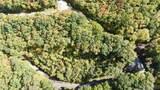 TDB Shady Wood Trail - Photo 4