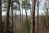 TBD Cowee Ridge Road - Photo 5