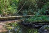 38 Raven Rock Vista - Photo 39