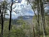 337 Peregrine Trail - Photo 1