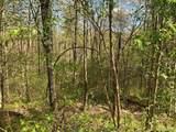 E-197 Hunters Mountain Drive - Photo 2