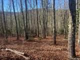 Lot 107 Crippled Oak Trail - Photo 3