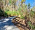 TBD Sapphire Ridge Road - Photo 5