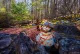 157 Woods Mountain Trail - Photo 5