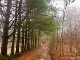 TBD Osage Lane - Photo 3