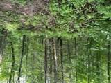 00 Woodchuck Trail - Photo 1