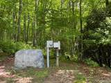 Lot 50A Maidenhaire Lane - Photo 7