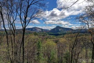 210 Devils Courthouse View, Cashiers, NC 28717 (MLS #85815) :: Lake Toxaway Realty Co