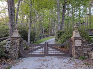 LOT 15 Squirrel Hunting Road, Cashiers, NC 28717 (MLS #85988) :: Landmark Realty Group