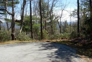 28 Lakeside Trail, Lake Toxaway, NC 28747 (MLS #86045) :: Landmark Realty Group