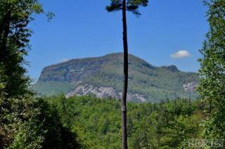 Lot F-8 Gorge Trail Road, Cashiers, NC 28717 (MLS #86066) :: Landmark Realty Group