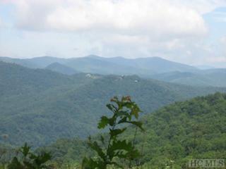 TBD Galloping Gopher Trail, Glenville, NC 28736 (MLS #86091) :: Landmark Realty Group