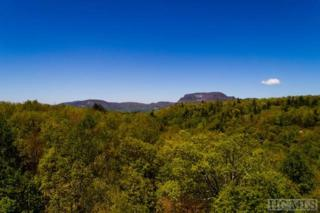 Lot 4 Meadow Crest Drive, Cashiers, NC 28717 (MLS #86104) :: Landmark Realty Group