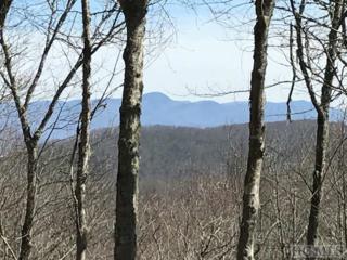 Lot 3 Trailhead Way, Glenville, NC 28736 (MLS #86110) :: Landmark Realty Group
