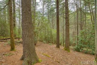 Lot 75 Long Lake Trail, Sapphire, NC 28774 (MLS #86119) :: Landmark Realty Group