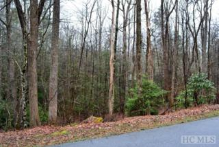 Lot 52 Holly Road, Sapphire, NC 28774 (MLS #86126) :: Landmark Realty Group