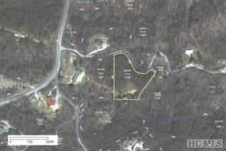 TBD Uplands Road, Brevard, NC 28712 (MLS #79969) :: Lake Toxaway Realty Co