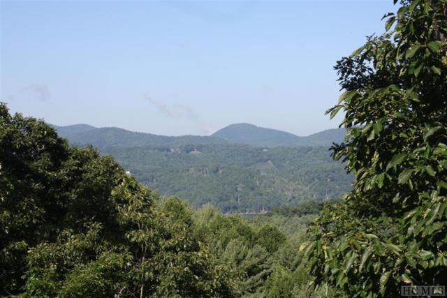 30 Ivy Rose Lane, Glenville, NC 28736 (MLS #87792) :: Berkshire Hathaway HomeServices Meadows Mountain Realty