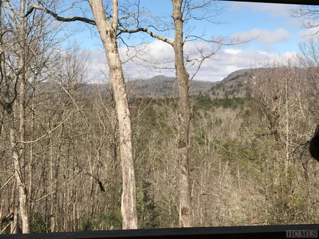2556 Upper Whitewater Road, Sapphire, NC 28874 (MLS #87797) :: Lake Toxaway Realty Co