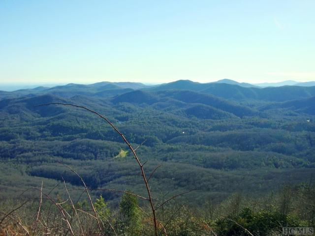 Lot 36 Longwing Drive, Sapphire, NC 28774 (MLS #87828) :: Berkshire Hathaway HomeServices Meadows Mountain Realty