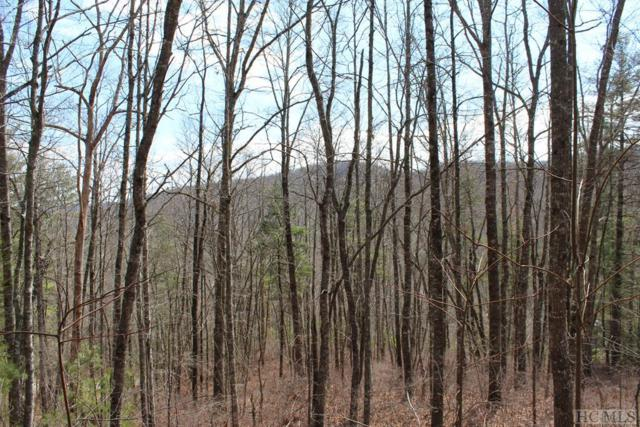 122 Ell Ridge, Glenville, NC 28736 (MLS #87876) :: Berkshire Hathaway HomeServices Meadows Mountain Realty