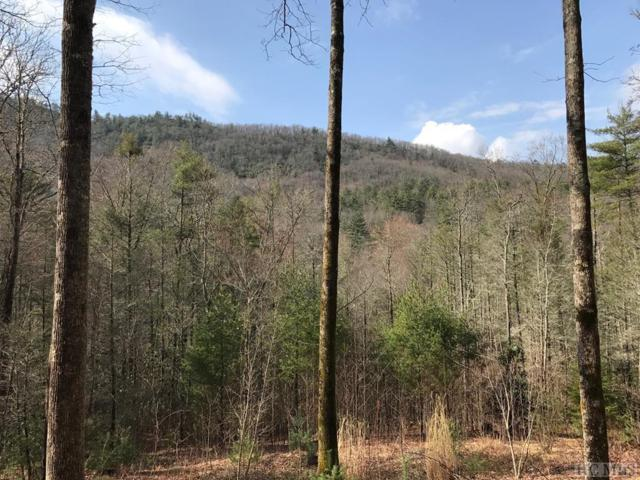 Lot 59 East Rochester, Cashiers, NC 28717 (MLS #87913) :: Berkshire Hathaway HomeServices Meadows Mountain Realty