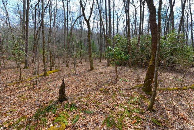 0 Little Creek Road, Scaly Mountain, NC 28775 (MLS #87916) :: Lake Toxaway Realty Co