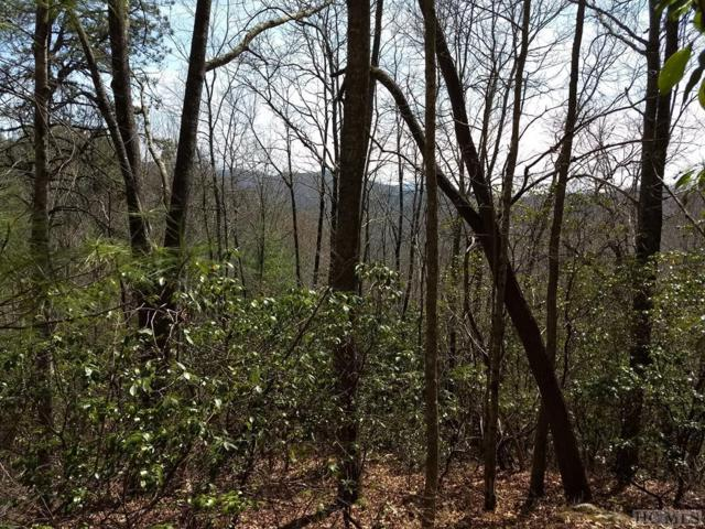 Lot 12 Cullowhee Forest Road, Cullowhee, NC 28723 (MLS #87946) :: Berkshire Hathaway HomeServices Meadows Mountain Realty