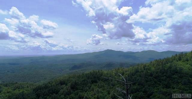 TBD Brushy Face Road, Highlands, NC 28741 (MLS #87991) :: Berkshire Hathaway HomeServices Meadows Mountain Realty
