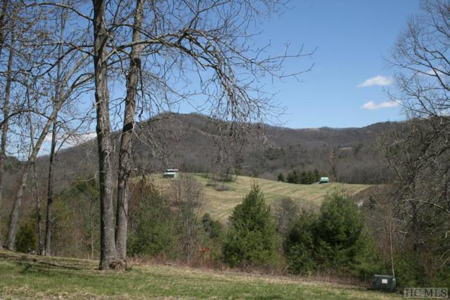 0 Glenville School Road, Glenville, NC 28736 (MLS #88014) :: Berkshire Hathaway HomeServices Meadows Mountain Realty