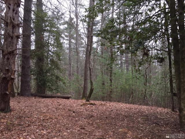 Lot 176 Lonesome Valley Rd, Sapphire, NC 28774 (MLS #88029) :: Berkshire Hathaway HomeServices Meadows Mountain Realty
