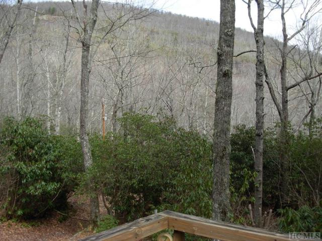 475 Horseshoe Cove Road, Lake Toxaway, NC 28747 (MLS #88079) :: Berkshire Hathaway HomeServices Meadows Mountain Realty