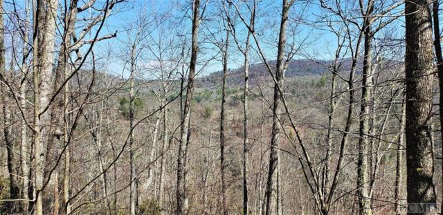 Lot 272 Audubon Trail, Cashiers, NC 28717 (MLS #88082) :: Berkshire Hathaway HomeServices Meadows Mountain Realty