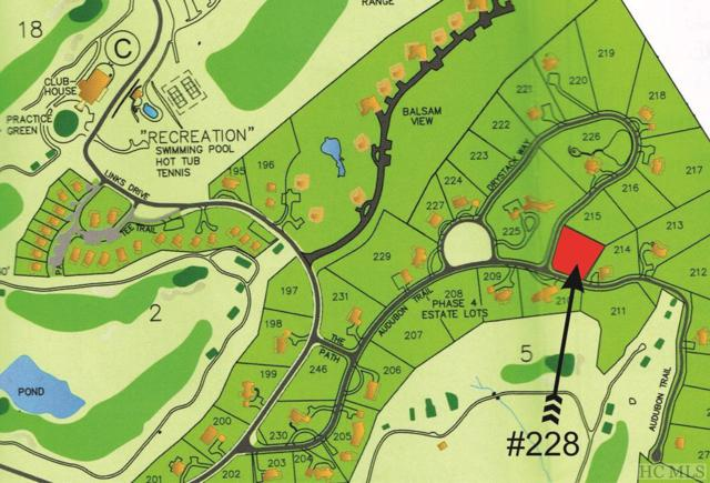 Lot 228 Audubon Trail, Cashiers, NC 28717 (MLS #88116) :: Berkshire Hathaway HomeServices Meadows Mountain Realty
