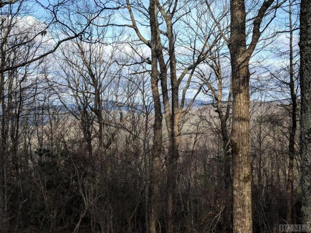 Lot 46 Falcon Ridge Road, Sapphire, NC 28774 (MLS #88145) :: Berkshire Hathaway HomeServices Meadows Mountain Realty