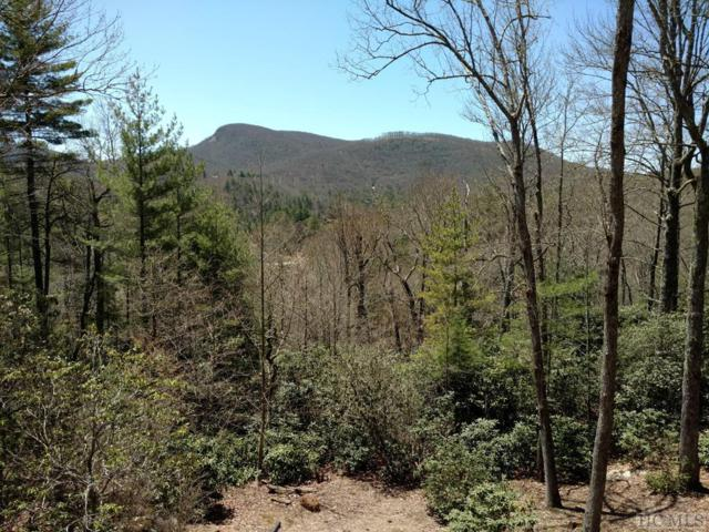 Lot 7 Luckies Way, Cashiers, NC 28717 (MLS #88203) :: Berkshire Hathaway HomeServices Meadows Mountain Realty