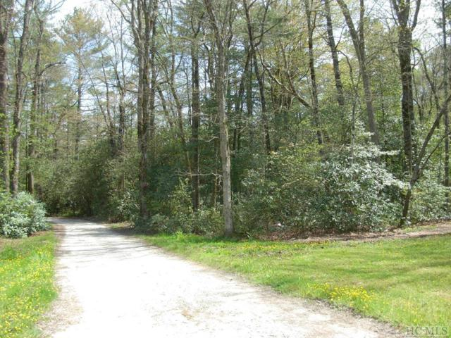186 Black Bear Lane, Sapphire, NC 28774 (MLS #88235) :: Berkshire Hathaway HomeServices Meadows Mountain Realty
