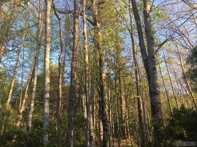 TBD Magnolia Drive, Highlands, NC 28741 (MLS #88286) :: Berkshire Hathaway HomeServices Meadows Mountain Realty
