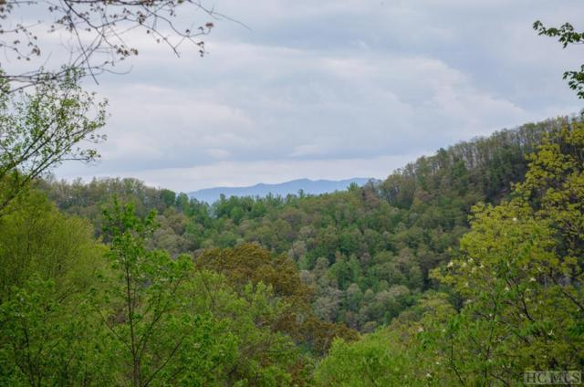 208 Papaw Lane, Glenville, NC 28736 (MLS #88382) :: Berkshire Hathaway HomeServices Meadows Mountain Realty