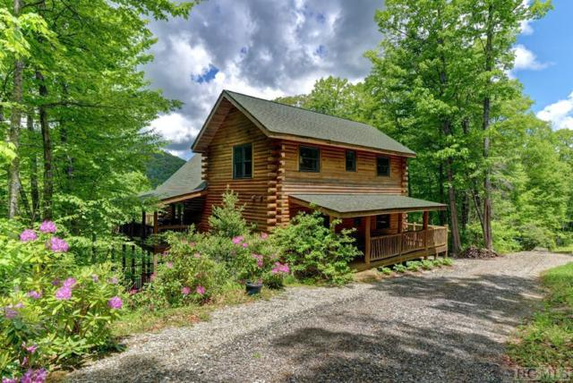 67 Aster Trail, Cullowhee, NC 28723 (MLS #88459) :: Berkshire Hathaway HomeServices Meadows Mountain Realty