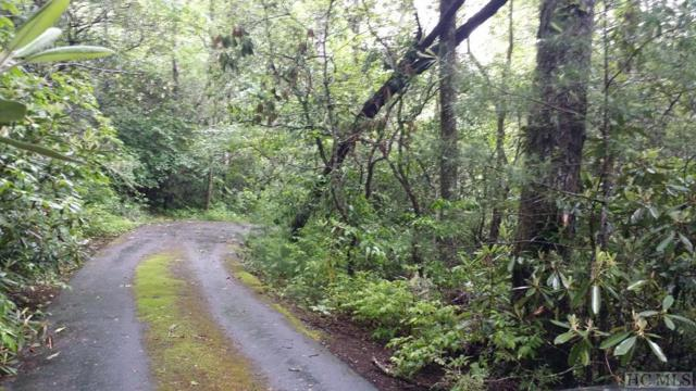 Lot 47 Rushing Brook Lane, Cashiers, NC 28717 (MLS #88485) :: Berkshire Hathaway HomeServices Meadows Mountain Realty