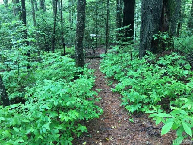 Lot 166 Whisper Lake Drive, Sapphire, NC 28774 (MLS #88503) :: Berkshire Hathaway HomeServices Meadows Mountain Realty