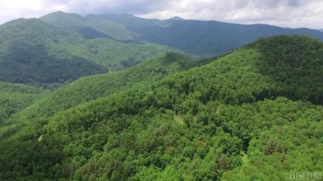 46 Waterfall Heights, Sylva, NC 28779 (MLS #88527) :: Berkshire Hathaway HomeServices Meadows Mountain Realty