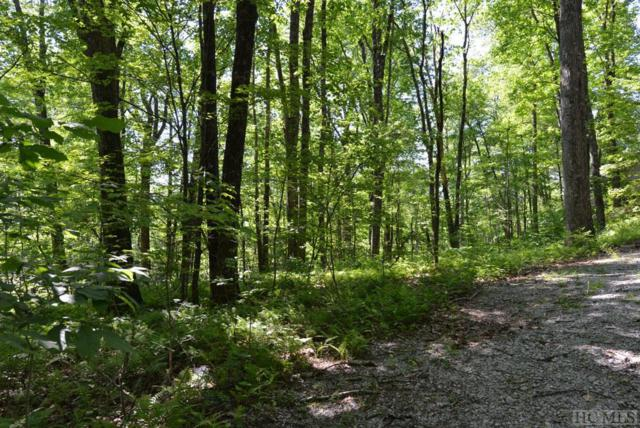00 Dog Mountain Road, Highlands, NC 28741 (MLS #88542) :: Lake Toxaway Realty Co