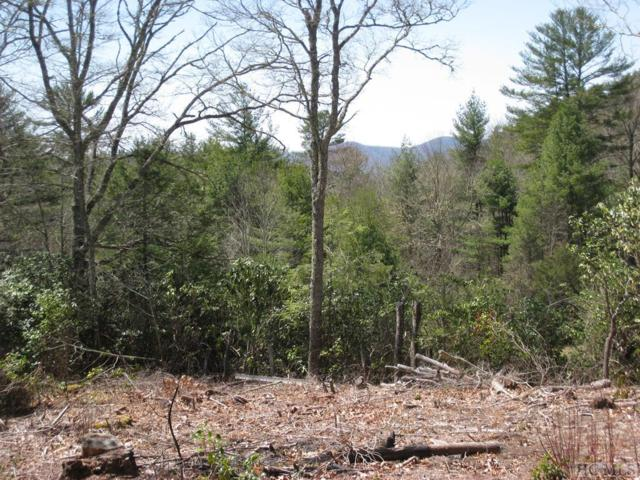 2 Cole Mountain Circle, Highlands, NC 28741 (MLS #88608) :: Lake Toxaway Realty Co