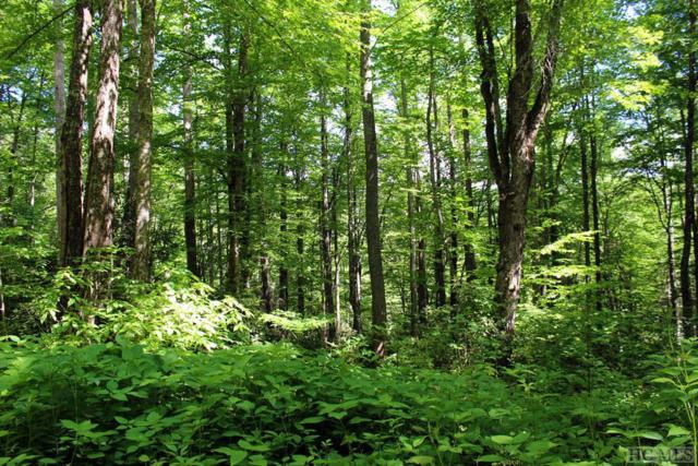 Lot 19 Woodes Mountain Trail, Cullowhee, NC 28723 (MLS #88626) :: Berkshire Hathaway HomeServices Meadows Mountain Realty